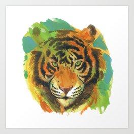 tiger stare Art Print