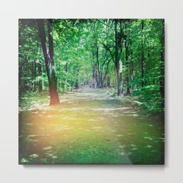 To Grandmother's House... Metal Print