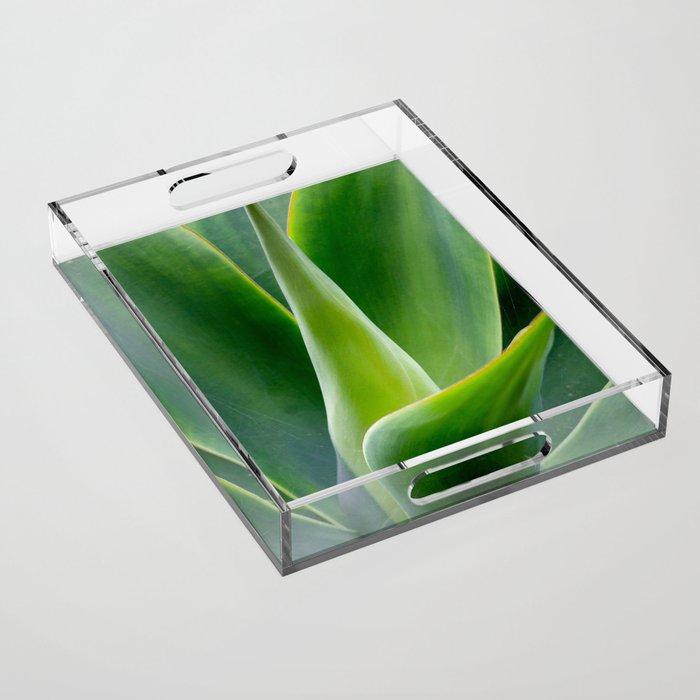 Agave Acrylic Tray