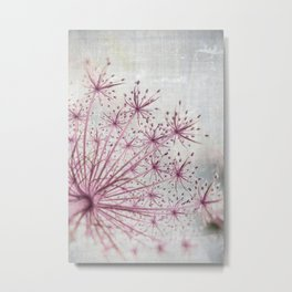 Vintage Raspberry Pink and Paris Gray Botanical Queen Anne's Lace Wildflower Metal Print