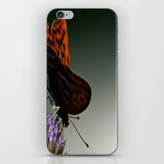 I spread my wings iPhone & iPod Skin