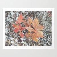 Autumn 10 Art Print