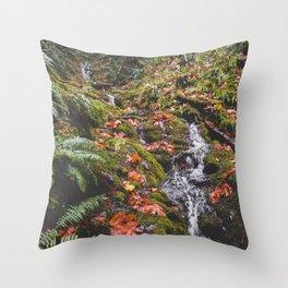 PNW Fall Waterfall Throw Pillow