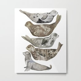 Seals of La Jolla Metal Print