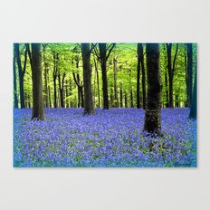 A Haze Of Blue Canvas Print