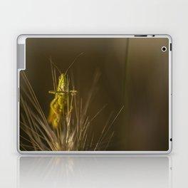 Hello world Laptop & iPad Skin