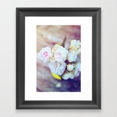 The Last Days of Spring - Old Roses IV Framed Art Print