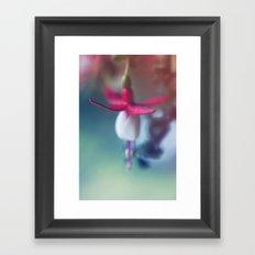 Fuchsia Flower Framed Art Print