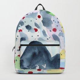The origin of Spring 1 Backpack