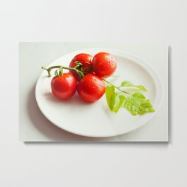 Fresh tomatoes just brought in from the garden Metal Print
