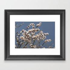 it's spring Framed Art Print