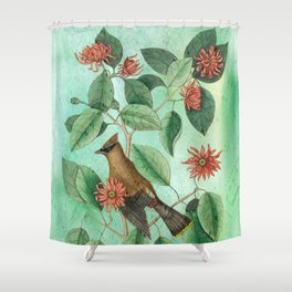 Bohemian Waxwing with Carolina Allspice, Antique Natural History Collage Shower Curtain