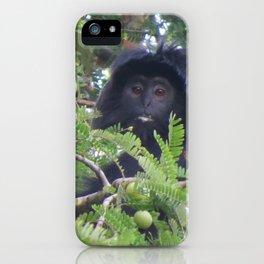 Ebony Leaf Monkey iPhone Case