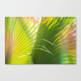 Summer, Forever Canvas Print