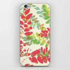 Maribou iPhone & iPod Skin