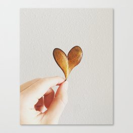 Perfect heart by nature leaf Canvas Print