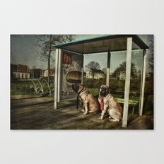 Human behaviour Canvas Print