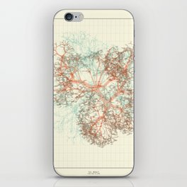 Arbor Ludi: Tal iPhone Skin