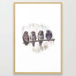 Barred Owls perched watercolor painting Framed Art Print