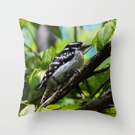 A Male Downy Woodpecker Throw Pillow