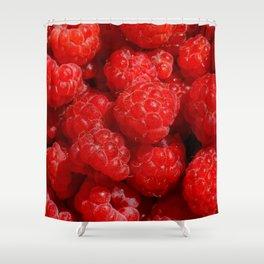 Wild berries of forest raspberries Shower Curtain