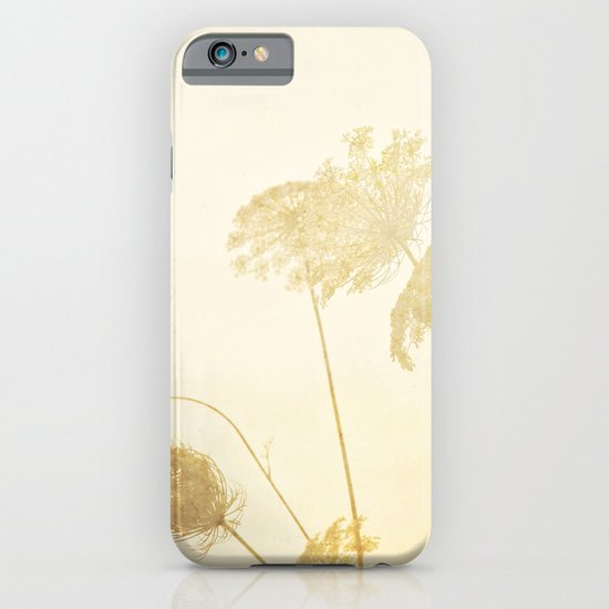 Queen Anne's Lace iPhone & iPod Case
