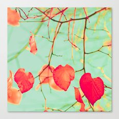 Fire-red Heart Shaped Leaves Canvas Print