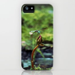 Resting in the Marsh iPhone Case