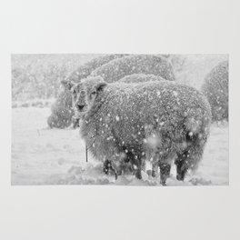 Sheep in the snow Rug