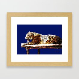 Jaguar God Of The Night Framed Art Print