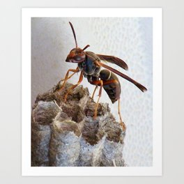 On Top of the World! Art Print