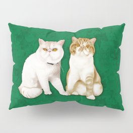 Teagues and Oliver Pillow Sham