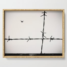 Freedom, a seagull is flying totally free beyond a spiked wire. Serving Tray