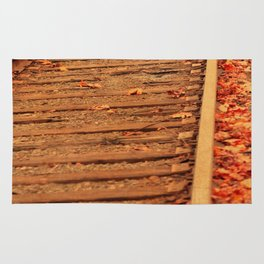 AUTUMN RAILS Rug