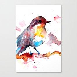 Pardal Canvas Print