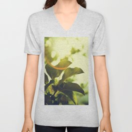 Morning Light Shining Through Branches Of Leaves Nature Photography Unisex V-Neck