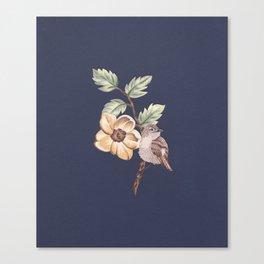 Brown Bird Canvas Print