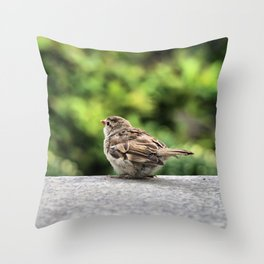 Little Feather Tasting Throw Pillow