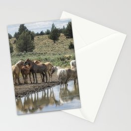 Wild Horses and Biting Flies Stationery Cards