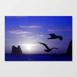 the double bird blues Canvas Print