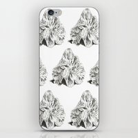shells iPhone & iPod Skins featuring SHELLS by sincerelykarissa