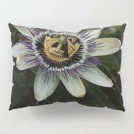 Passiflora incarnata Pillow Sham