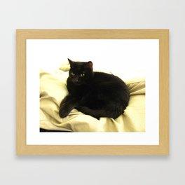Queen Kitty 2795 Framed Art Print