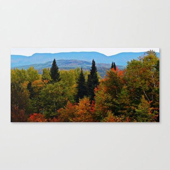 Mont Albert From Afar Canvas Print