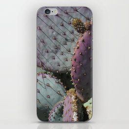 Cactus Whiskers iPhone Skin