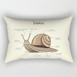 Anatomy of a Snail Rectangular Pillow
