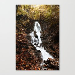 Wasserfall Flintsbach an der Burgruine Falkenstein Canvas Print