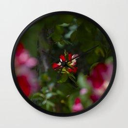 Red Tea Rose Wall Clock