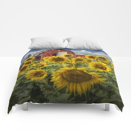 Golden Blooming Sunflowers with Red Barn Comforters