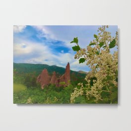 Peek Through the Flowers Metal Print
